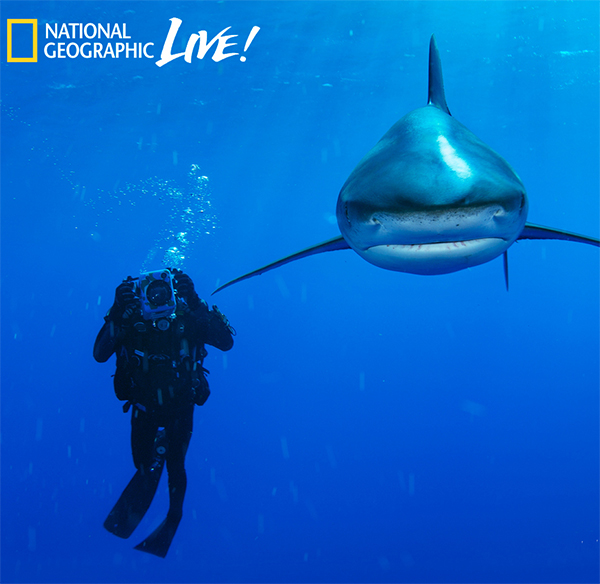Brian Skerry reveals the truths & tales about his life under the sea